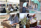 بیش از 2 هزار میلیارد ریال تسهیلات اشتغال در استان فارس جذب شد