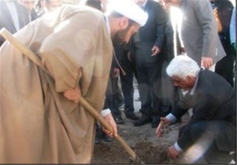 کاشت 1000 اصله نهال زیتون در دره شهر