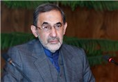 Leader's Adviser Underlines Iran's Right to Access Peaceful N. Energy