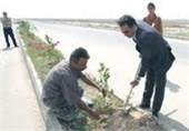 کشت نهال در 2 هکتار از اراضی شهرک صنعتی بوشهر