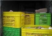 پایگاههای سیار دامپزشکی در بوئینزهرا راهاندازی میشود//////انتشار