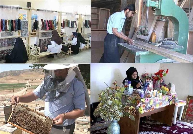 طرح-اشتغالزایی-کاج-در-استان-گلستان-اجرا-میشود