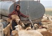 اختصاص تانکر برای آبرسانی به عشایر خراسان شمالی