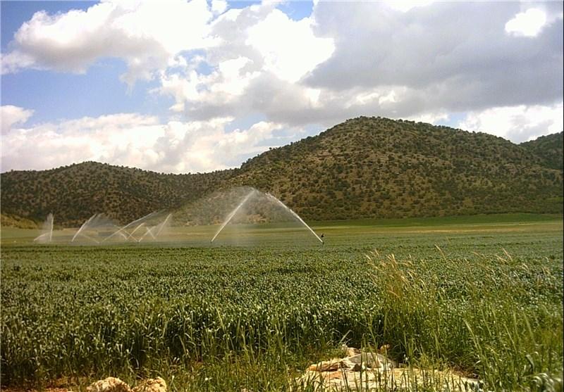 توسعه سیستمهای آبیاری نوین در استان خراسان جنوبی رونق تولید را به دنبال دارد