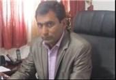 کارخانه فرآوری مس در جنوب کرمان راهاندازی میشود