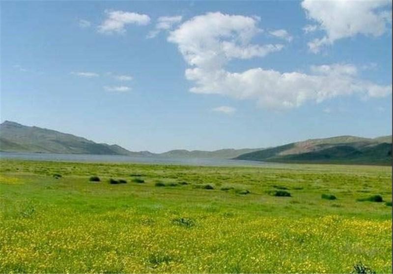 عملیات احیاء و اصلاح 180 هکتار از مراتع شهرستان دیلم آغاز شد
