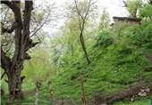 Sardasht, A Scenic City West of Iran