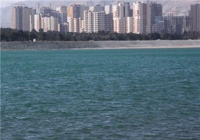 آنفلوانزای فوق حاد| هشدار به تهرانی ها؛ از تماس با پرندگان دریاچه چیتگر خودداری کنید