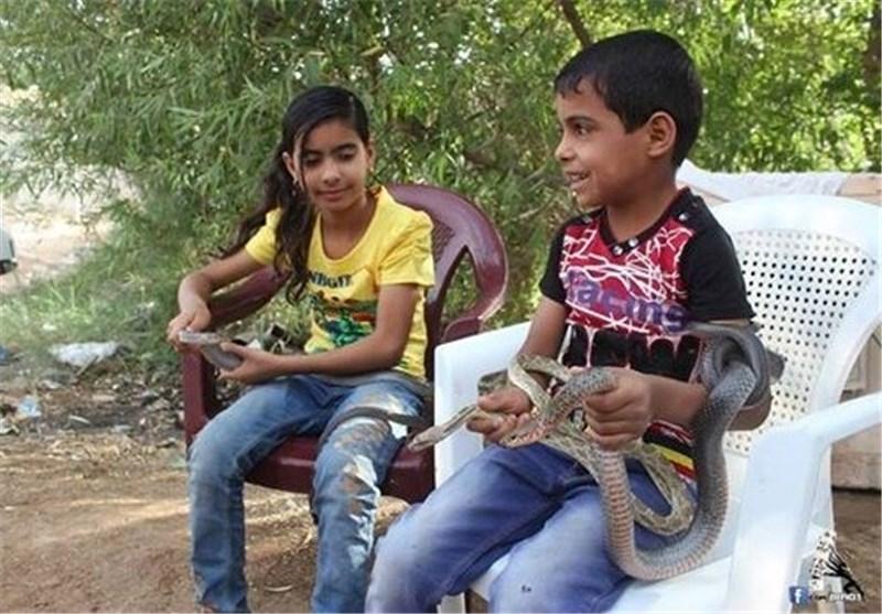طفل عراقی یهوى اللعب مع الأفاعی ولا یتأثر بسمومها؟!!