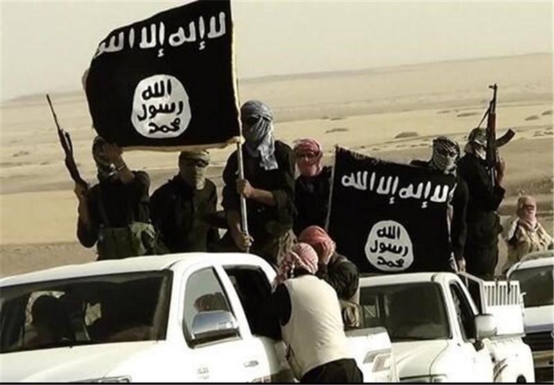 داعش القاعده