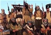 کشته شدن 200 تروریست مغربی در عراق و سوریه