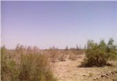 80 درصد مشکلات مردم خراسان جنوبی در بخش منابع طبیعی مربوط به اجرای قانون است