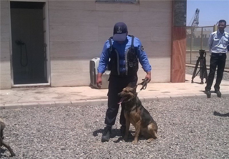 Iranian Customs Launches Detection Dog Training Center