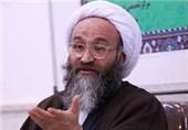 عضو مجلس خبرگان رهبری: حفاظت از جان امام زمان(عج) مهمترین رسالت امام حسن عسکری(ع) بود