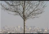کرمانشاه| مناطق مرزی کرمانشاه غبارآلود میشود