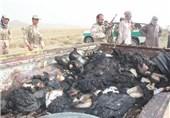 محموله سنگین 877 کیلوگرمی موادمخدر در اسفندقه جیرفت متوقف شد