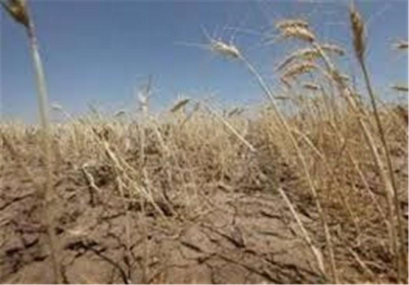 خشکسالی اردبیل