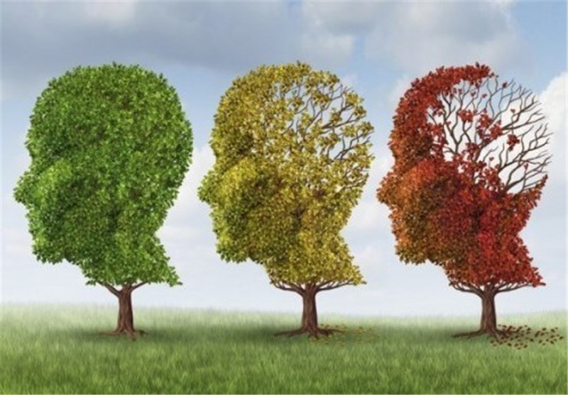 Synapse Discovery Could Lead to New Treatments for Alzheimer's