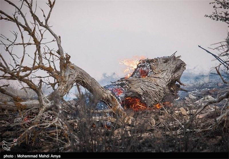 آتش پارک ملی گلستان