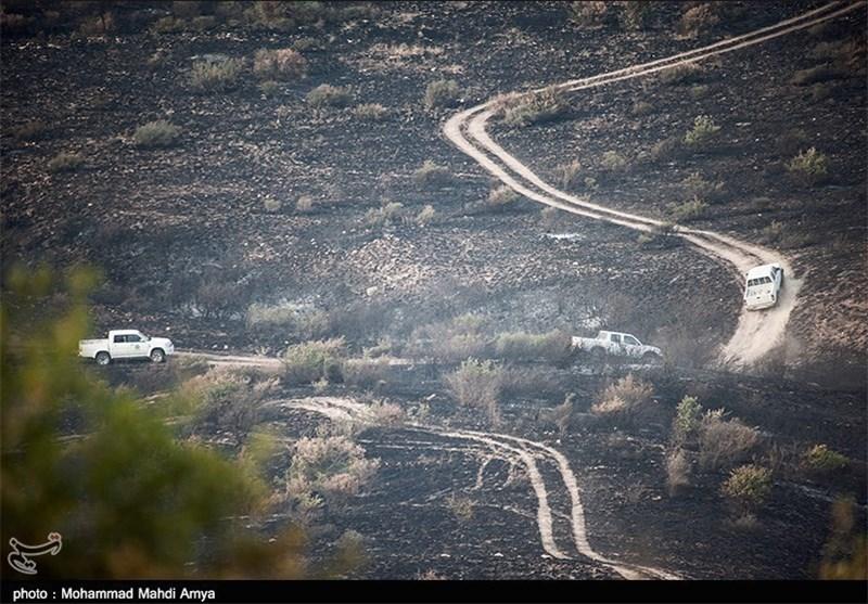 بیش از 80 هکتار از اراضی جنگلی پارک ملی گلستان در آتش سوخت