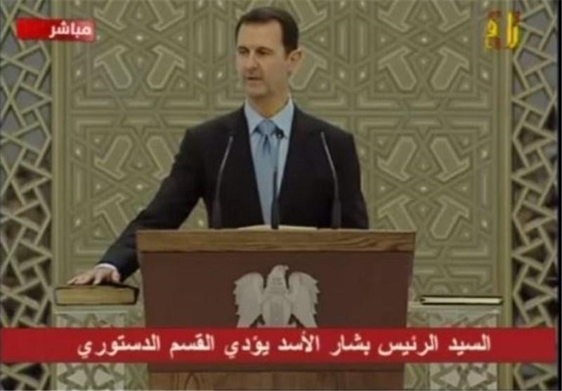 الأسد القسم