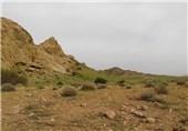 اردبیل|شکار در منطقه دربند مشکول 5 سال ممنوع شد