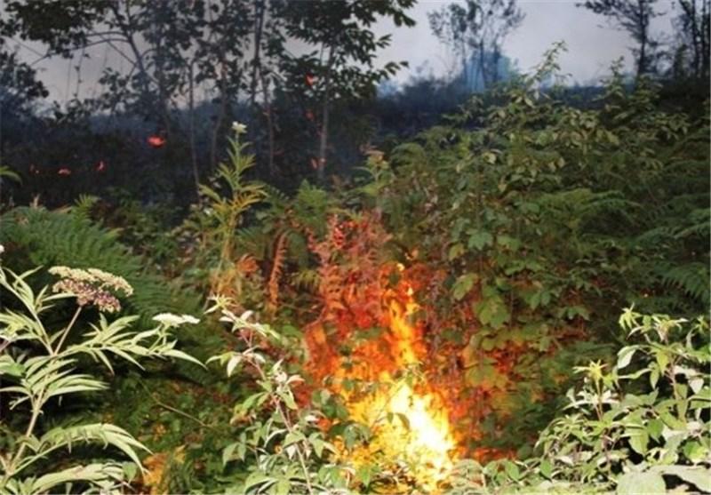 5 نقطه بحرانی آتشسوزی در گیلانغرب شناسایی شد