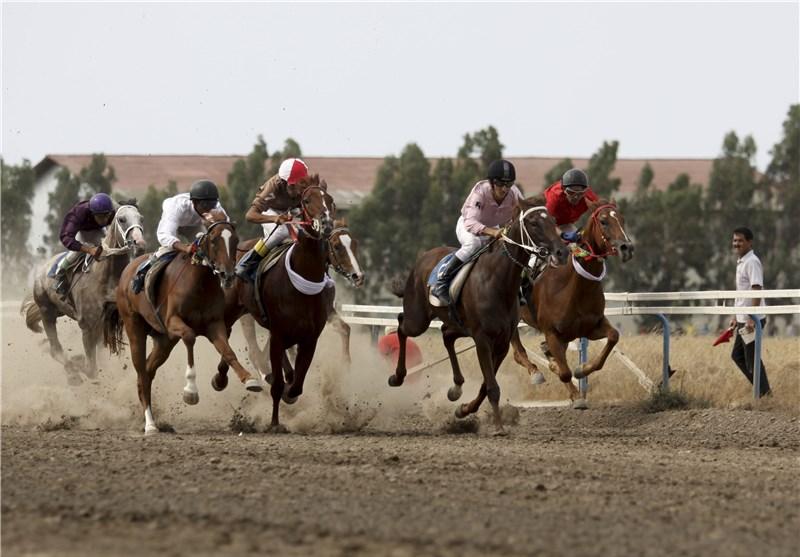 گلستان| هفته پنجم مسابقات اسبدوانی تابستانه کشور در بندرترکمن برگزار شد