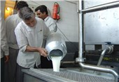 سوءاستفاده برخی دامداران از گرانی ارز/ شیرخام کارخانجات لبنیات تامین نمیشود