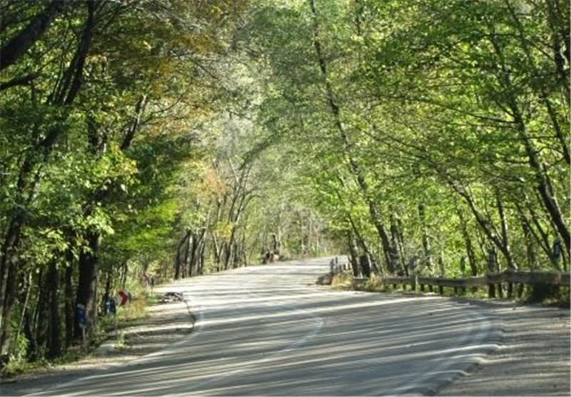 گلستان| پارک هیرکانی بسکی در گنبدکاووس احداث میشود