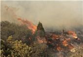 آتشسوزی در پارک ملی گلستان