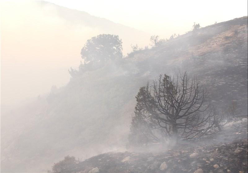 283 هکتار از اراضی ملی در گنبدکاووس طعمه حریق شد