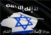 IŞİD'in Yok Edilmesi Çıkarlarımıza Aykırı