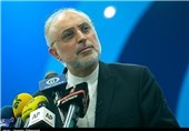 'Winding Road' ahead of Iran Nuclear Talks: AEOI Chief