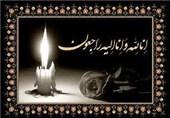 پیرغلام امام رضا(ع) دار فانی را وداع گفت