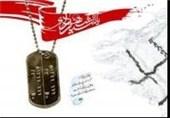 شهدای قرآنی