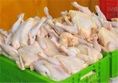 مرغ بدون آنتی بیوتیک