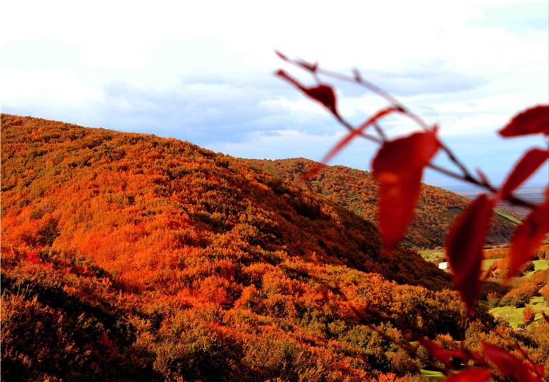 مناظر بی بدیل پاییزی سوها + تصاویر