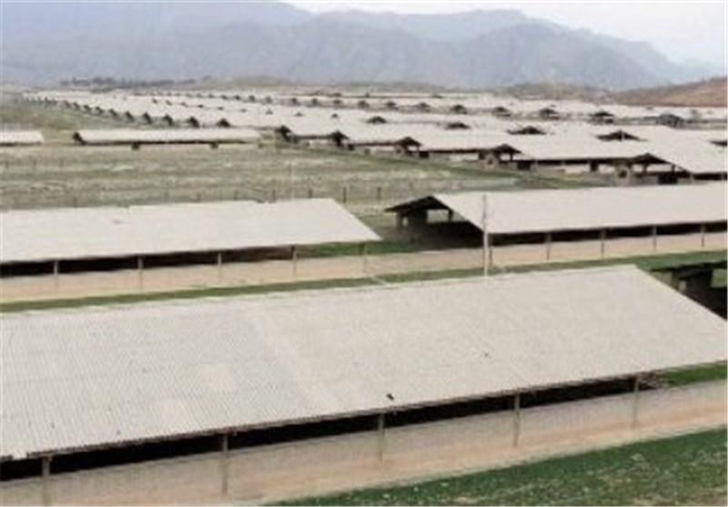 ظرفیت کشت و صنعت مغان برای افزایش توان نیروهای استخدامی به کار گرفته شود
