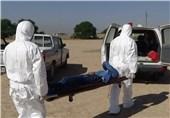 شبکه بهداشت و درمان خوزستان گزارشی از ابتلا به تب کریمه کنگو نداده است