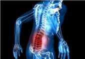 Chronic Inflammation Causing Loss of Muscle Mass