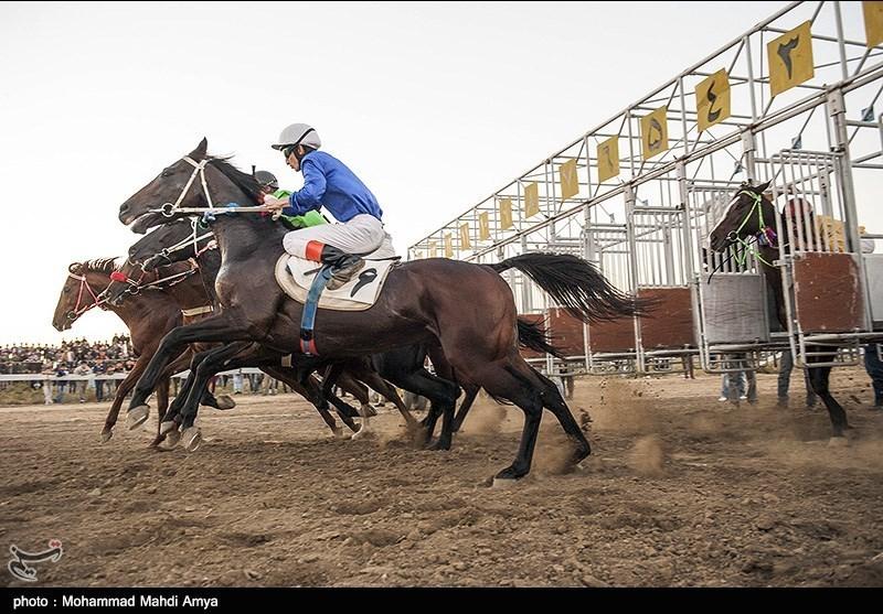 مسابقات اسبسواری دور دریاچه شورابیل اردبیل برگزار شد