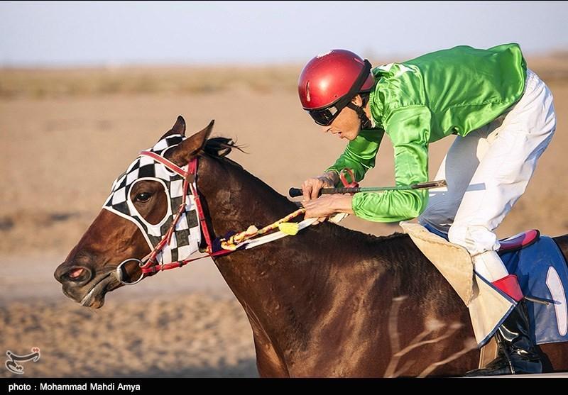 مسابقات کورس اسبسواری راهوار در مشهد برگزار میشود
