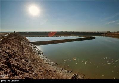 دیشب سد خاکی نیشابور شکست، 10 واحد مسکونی زیر آب رفت و 50 نفر مجروح شدند