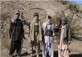 بازداشت 4 جنگجوی گروه «جندالله» ازبکستان در شمال افغانستان