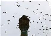مسجد جامع اصفهان 9