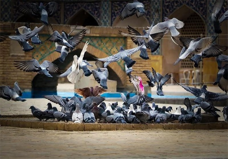 مسجد جامع اصفهان 12