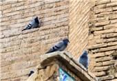مسجد جامع اصفهان 17