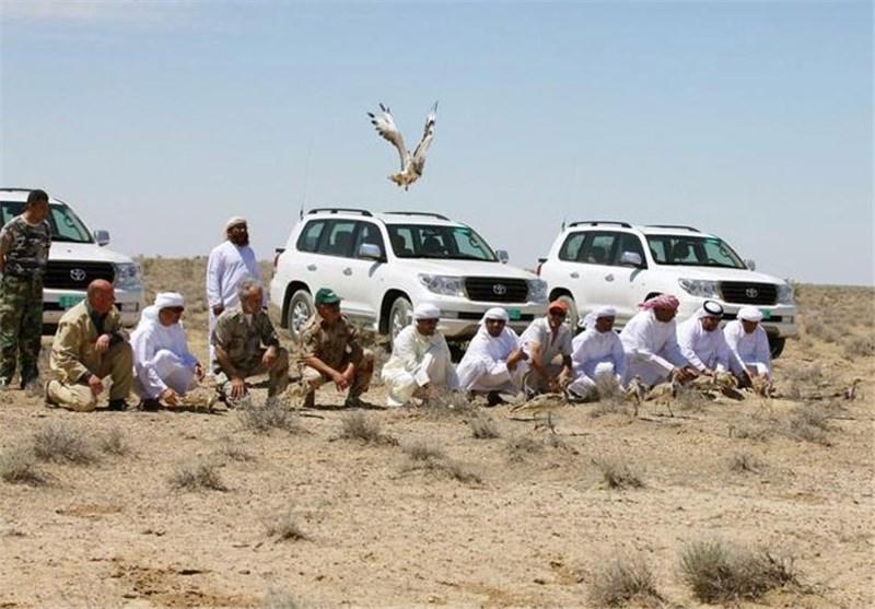 شکار پرنده هوبره در پاکستان
