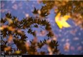کاهش محسوس دمای هوا در خراسان رضوی/ پاییز سرد مشهد در راه است